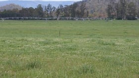 Rural / Farming commercial property for sale at 14439 Highland Lakes Road Deloraine TAS 7304