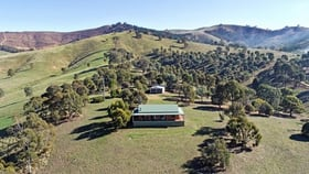 Rural / Farming commercial property for sale at 19 Star of the Glen Road Bonnie Doon VIC 3720
