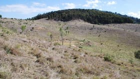 Rural / Farming commercial property for sale at Ropeley QLD 4343