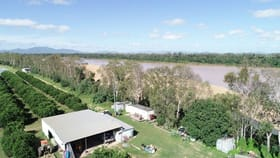 Rural / Farming commercial property for sale at 2608 Kirknie Road Home Hill QLD 4806