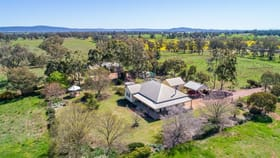 Rural / Farming commercial property for sale at 107 BACK CREEK RESERVE ROAD Cowra NSW 2794