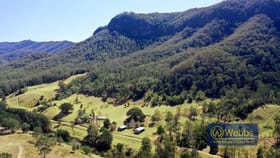 Rural / Farming commercial property for sale at 1230 Curricabark Road Gloucester NSW 2422