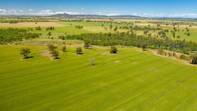 Rural / Farming commercial property for sale at French Park-Bullenbung Road Milbrulong NSW 2656