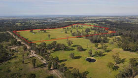 Rural / Farming commercial property sold at 297 Waddells Rd Nicholson VIC 3882