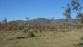Rural / Farming commercial property for sale at Golden Fleece QLD 4621