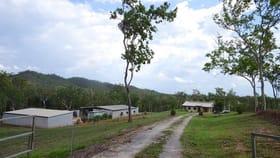 Rural / Farming commercial property for sale at 282 Hodzic Road Biboohra QLD 4880