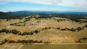 Rural / Farming commercial property for sale at 240 Whitings Lane Quorrobolong NSW 2325