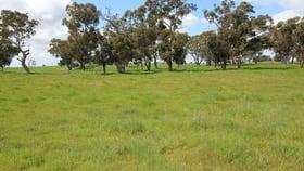 Rural / Farming commercial property sold at Bridge Road Naracoorte SA 5271