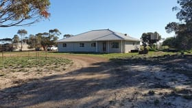 Rural / Farming commercial property for sale at 367 Range Road Pingrup WA 6343