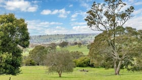 Rural / Farming commercial property for sale at 640 Flaxmans Valley Road Flaxman Valley SA 5235