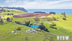Rural / Farming commercial property for sale at 65 Table Cape Road Wynyard TAS 7325