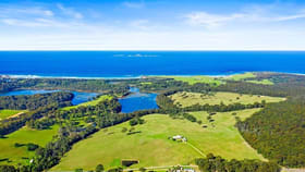 Rural / Farming commercial property for sale at 7514 Princes Highway Narooma NSW 2546