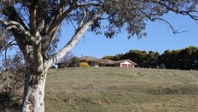 Rural / Farming commercial property for sale at 141 McManus Road Portland NSW 2847