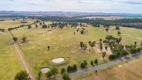 Rural / Farming commercial property for sale at 60 GRANTVILLE ROAD Gooloogong NSW 2805