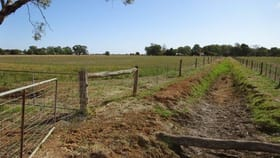 Rural / Farming commercial property for sale at Lot 2/667 WHARPARILLA ROAD Echuca West VIC 3564