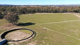Rural / Farming commercial property for sale at Lot 2 Adelargo Road Grenfell NSW 2810