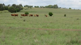 Rural / Farming commercial property for sale at Lot 25 Lancasters Road Murgon QLD 4605