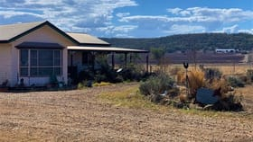 Rural / Farming commercial property for sale at 75 Beauaraba Road Linthorpe QLD 4356