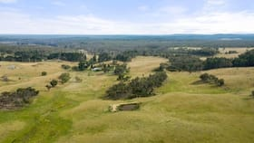 Rural / Farming commercial property for sale at 123 Kirriford Road, Wog Wog Braidwood NSW 2622