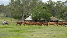 Rural / Farming commercial property for sale at 482 Hetheringtons Rd Manyung QLD 4605