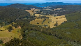 Rural / Farming commercial property for sale at Valley Road Dover TAS 7117