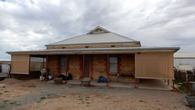 Rural / Farming commercial property for sale at 28 Hoskin St Terowie SA 5421