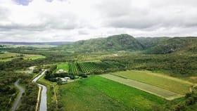 Rural / Farming commercial property for sale at 8 Kippen Drive Arriga QLD 4880