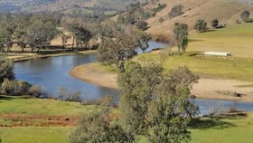 Rural / Farming commercial property for sale at 4912 River Road Talmalmo NSW 2640