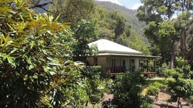 Rural / Farming commercial property for sale at 873 Commissioners Ck Road Commissioners Creek NSW 2484