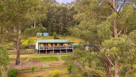 Rural / Farming commercial property for sale at 1650 Wollombi Road Millfield NSW 2325