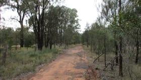 Rural / Farming commercial property for sale at Lot 113 Upper Humbug Road Tara QLD 4421