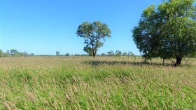 """Rural / Farming commercial property for sale at . """"Tarilla"""" St George QLD 4487"""