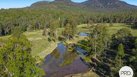Rural / Farming commercial property for sale at 3315 Busbys Flat Road Busbys Flat NSW 2469