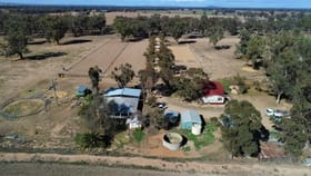 Rural / Farming commercial property for sale at 8308 Lachlan Valley Way Forbes NSW 2871