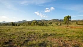 Rural / Farming commercial property for sale at 36 & 39/ Yarrabin Road Mudgee NSW 2850