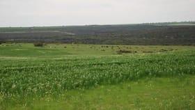 Rural / Farming commercial property for sale at Yallabatharra WA 6535