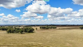 Rural / Farming commercial property for sale at Anchor Lot 236 Yetman Road Inverell NSW 2360