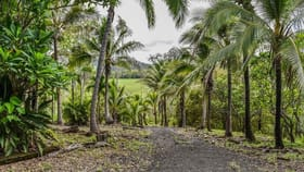 Rural / Farming commercial property for sale at 1707 Yakapari Seaforth Road Mount Jukes QLD 4740