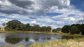 Rural / Farming commercial property for sale at Murdochs Lane Goulburn NSW 2580