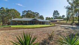 Rural / Farming commercial property sold at 227 Robertson Circuit Singleton NSW 2330
