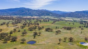 Rural / Farming commercial property for sale at 210 Stock Route Rd Blandford NSW 2338