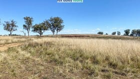 Rural / Farming commercial property for sale at Lots 4, 5, 27, 56, 5 Ashford Road Inverell NSW 2360