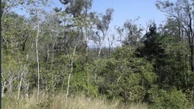 Rural / Farming commercial property for sale at 1 Camp Paddock Road Good Night QLD 4671