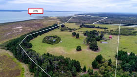 Rural / Farming commercial property for sale at 146 acres TANKERTON ROAD French Island VIC 3921