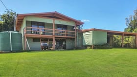 Rural / Farming commercial property for sale at 475 Pinnacle Road Julatten QLD 4871