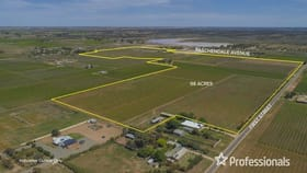 Rural / Farming commercial property for sale at 57 First Street Merbein VIC 3505