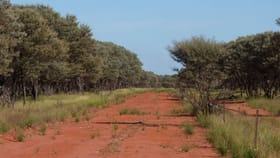 """Rural / Farming commercial property for sale at """"Youngerina"""" Hungerford Road Bourke NSW 2840"""