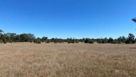 Rural / Farming commercial property sold at Lot 18 Tara Koga Road Kogan QLD 4406