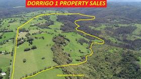 Rural / Farming commercial property sold at 308-478 Paddys Plains Road North Dorrigo NSW 2453