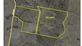 Rural / Farming commercial property for sale at 826 Mahers Rd Bonegilla VIC 3691